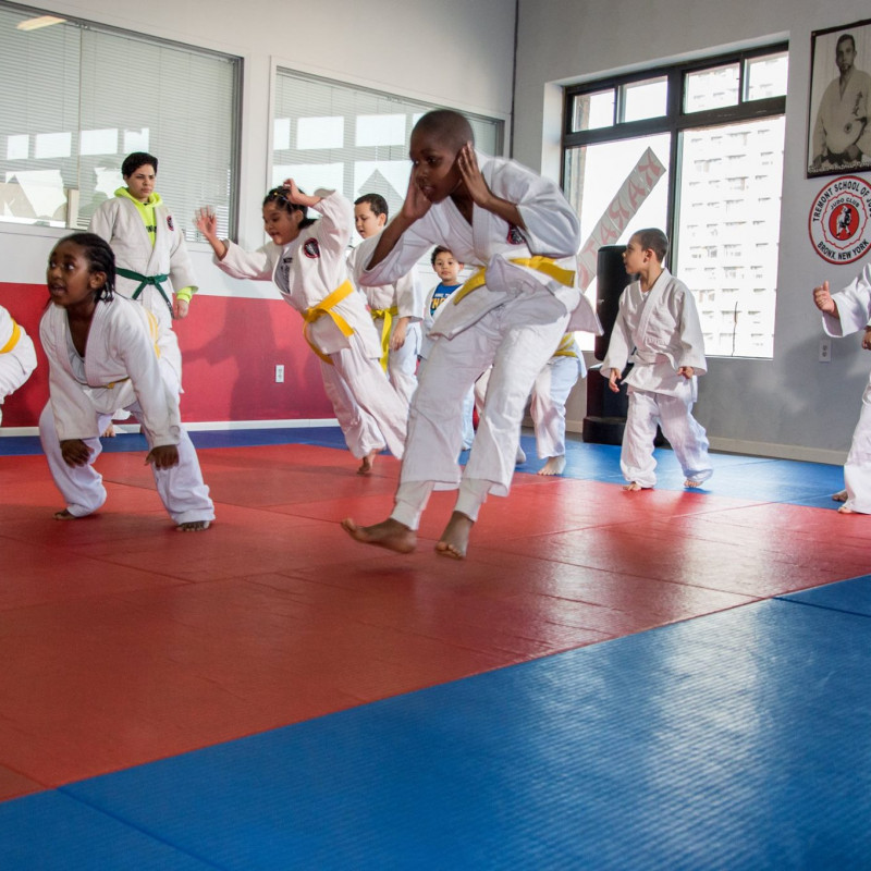 Senshi Okami Martial Arts Center in The Bronx, NY | Free Quote | Kidlistings