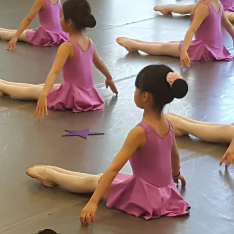 Classical School of Ballet Long Island in GARDEN CITY P, NY | Free Quote | Kidlistings