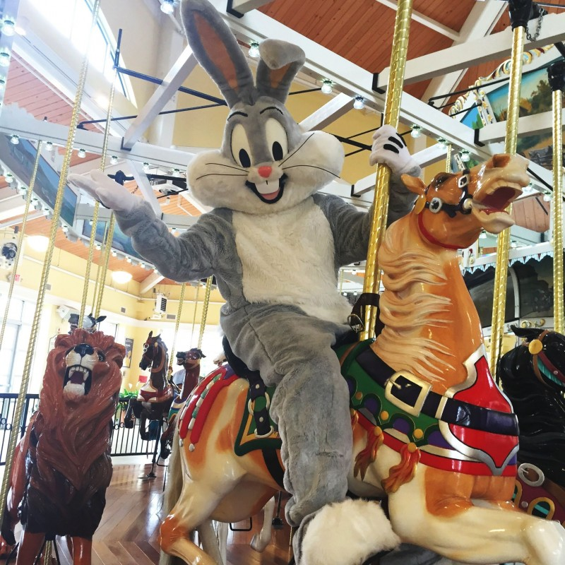Nunley's Carousel in Garden City, NY | Free Quote | Kidlistings