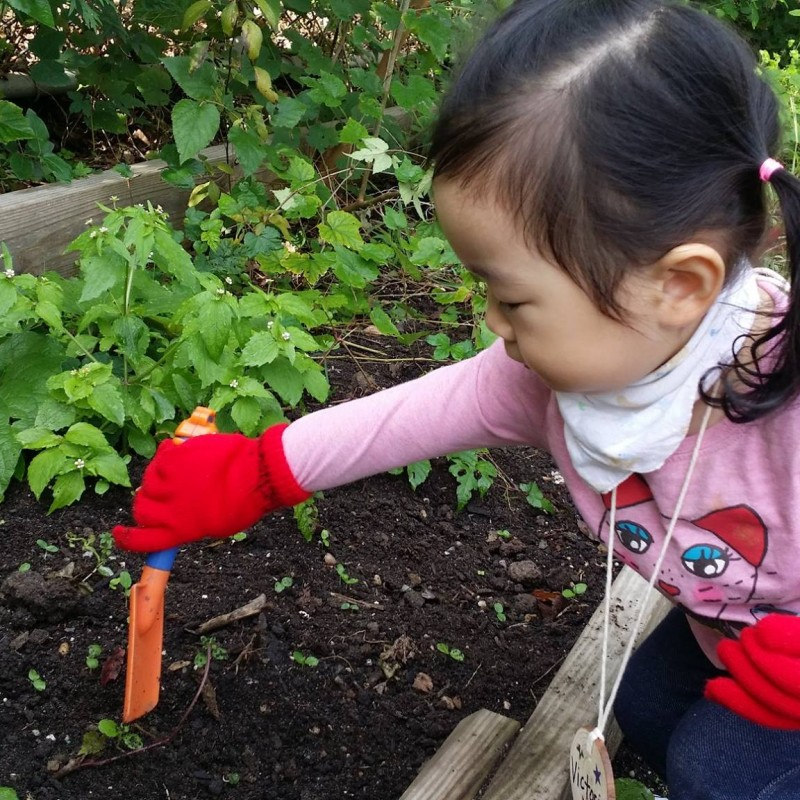 Queens Botanical Garden in Flushing, NY | Free Quote | Kidlistings