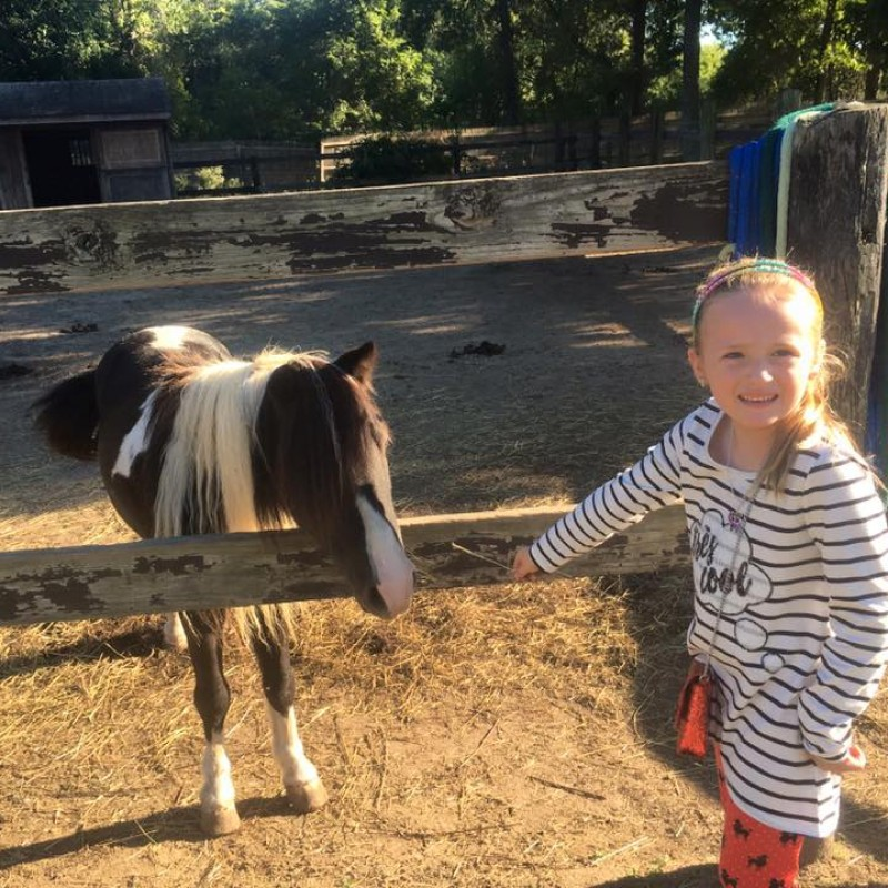 Bouncin' Pony Party Company in Yaphank, NY | Free Quote | Kidlistings