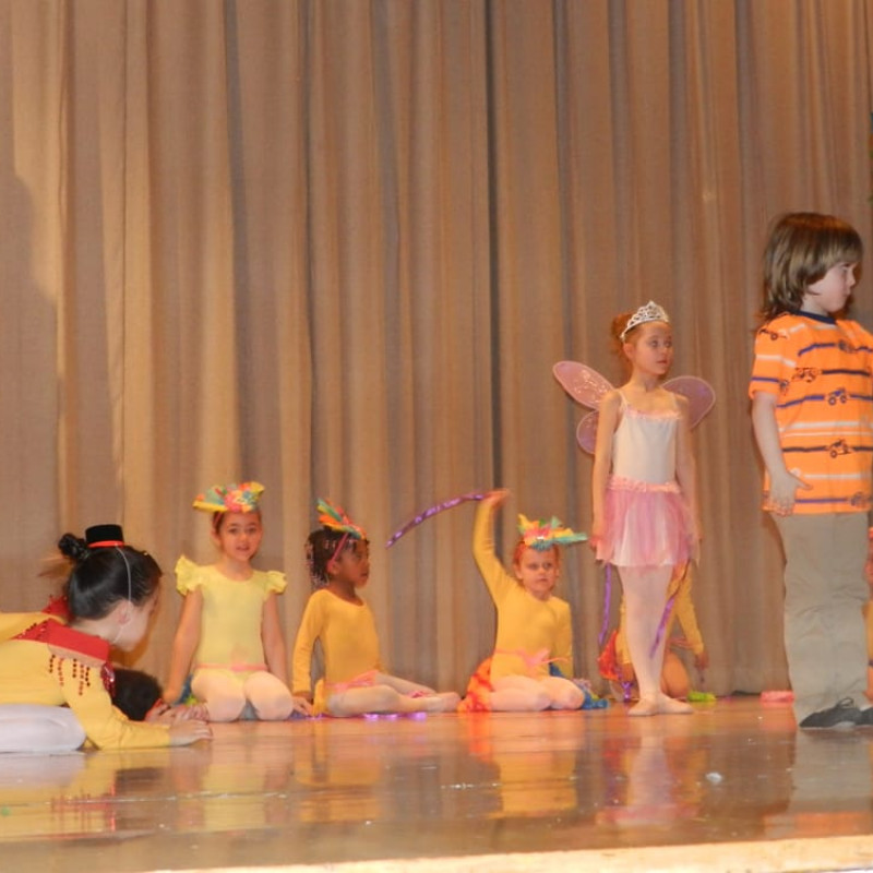Brooklyn Center for the Arts in Brooklyn, NY | Free Quote | Kidlistings