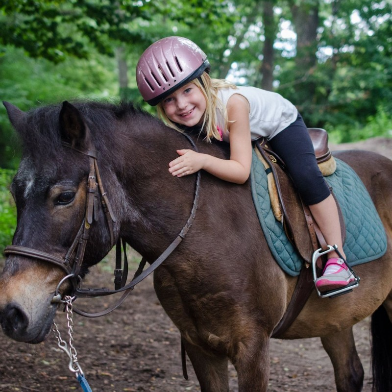Kensington Stables in Brooklyn, NY | Free Quote | Kidlistings
