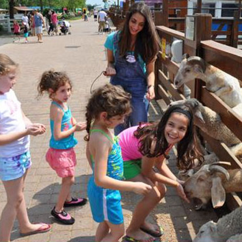White Post Animal Farm in Melville, NY | Free Quote | Kidlistings