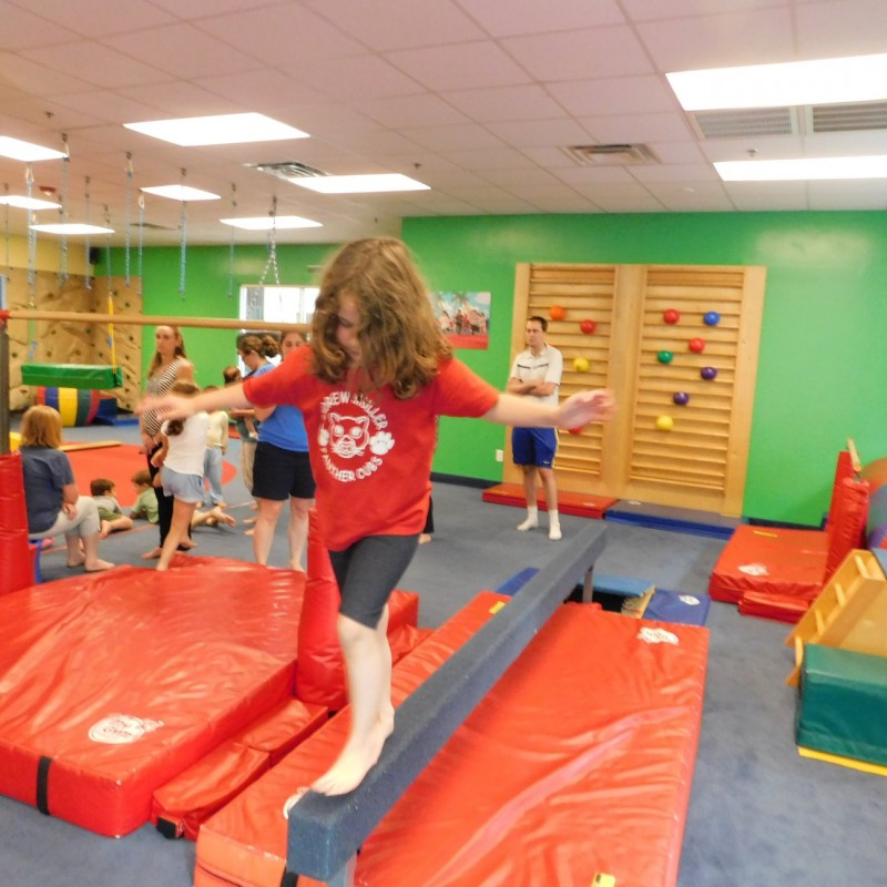 My Gym in Stony Brook, NY   Free Quote   Kidlistings
