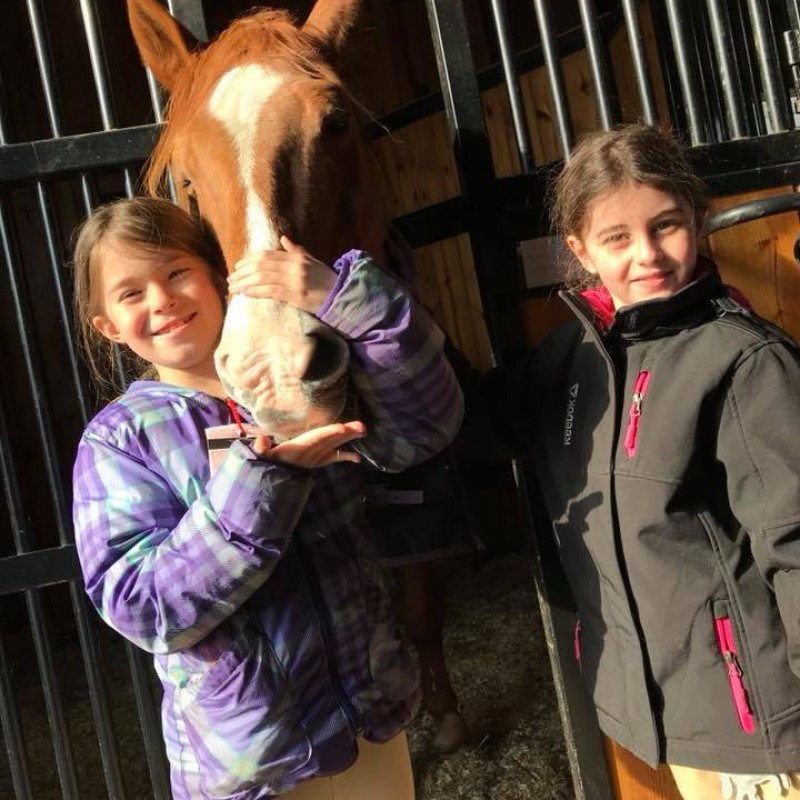 The New York Equestrian Center in West Hempstead, NY | Free Quote | Kidlistings