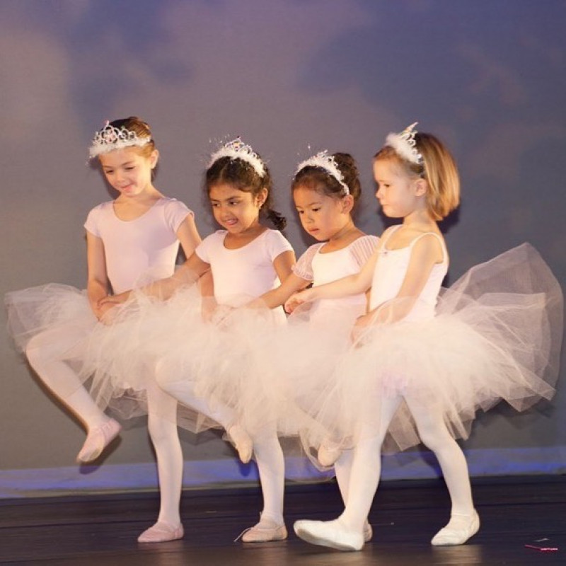 Bridge For Dance in Manhattan, NY | Free Quote | Kidlistings