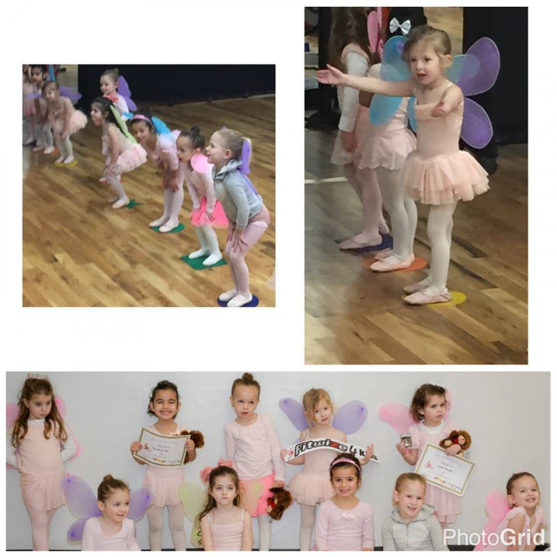 Fitwize Sports & Dance in Cedarhurst, NY | Free Quote | Kidlistings