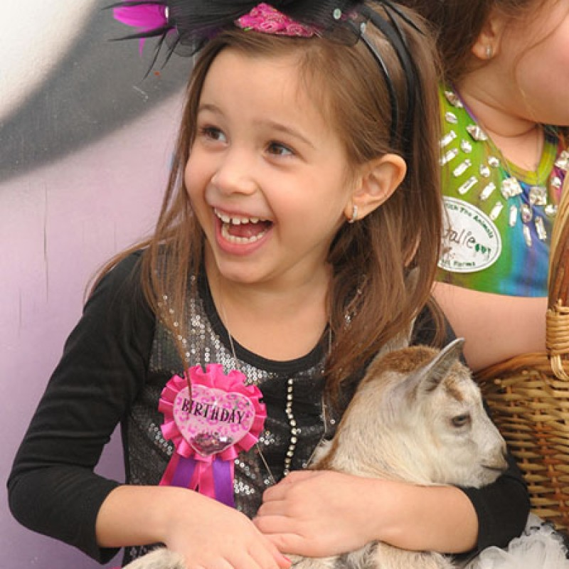 White Post Animal Farm in Melville, NY   Free Quote   Kidlistings
