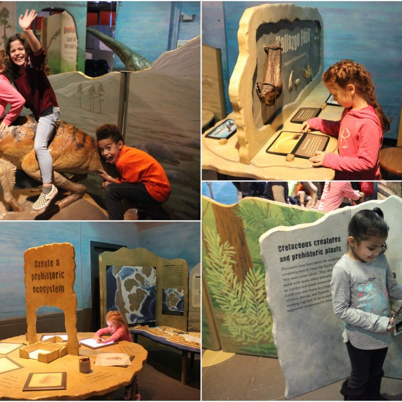 Long Island Children's Museum in Garden City, NY | Free Quote | Kidlistings